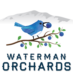 Waterman-Logo